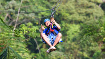 Rainforest Canopy Tour from San Jose, San Jose, Ziplines