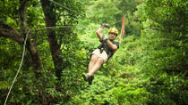 Sarapiqui River Sightseeing Cruise and Zipline Canopy Tour from San Jose, San José