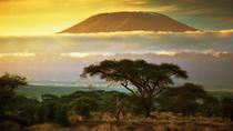 WILD PHOTO EXPEDITION KENYA, Nairobi, Multi-day Tours