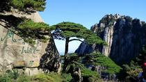 Full Day Huangshan Yellow Mountain Group Tour, Huangshan, Day Trips