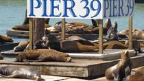 PIER 39 Attraction Pass, San Francisco, Citypass vervoer en bezienswaardigheden