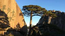 Mount Huangshan Highlights from Huanghsan, Huangshan, Full-day Tours