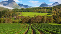 Andalsnes Shore Excursion: From Fjords to Trolls, Western Norway, Ports of Call Tours