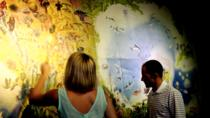 Cozumel Combo Tour: Discover Mexico Park and Chankanaab Day Pass, Cozumel, Attraction Tickets