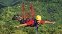 La Bestia Zipline Tour at ToroVerde Adventure Park, Puerto Rico, Ziplines