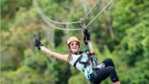 Zipline Adventure at Toro Verde Adventure Park, Puerto Rico, Ziplines