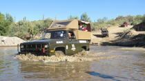 M1009 Blazer 4x4 Sonoran Desert Adventure from Phoenix, Phoenix, 4WD, ATV & Off-Road Tours