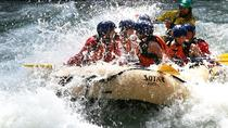 Whitewater Rafting on Toby Creek, Kootenay Rockies, White Water Rafting