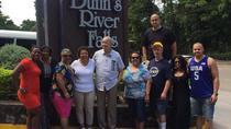 Private and Customized Tour to Dunn's River and or Secret Falls and Ocho Ros highlight from Montego...