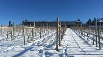 Kelowna Weintour, Kelowna & Okanagan Valley, Wine Tasting & Winery Tours
