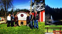 Victoria to Cowichan Valley Wine Tour, Victoria, Horse Carriage Rides
