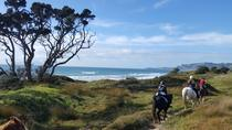 North Auckland - Pakiri Beach Horse Riding, Auckland, Horseback Riding