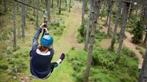 Round-Trip Private Transfer from Auckland to Tree Adventures, Auckland, Private Transfers