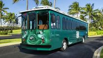 I-RIDE Trolley Unlimited Ride Pass, Orlando, Trolley Tours