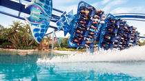 Orlando Attractions Roundtrip Transfer, Orlando, null