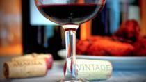 Portuguese Wine Experience Tour with Wine Tastings in Porto
