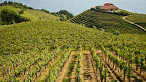 Full-Day Private Basque Country Wine and Cheese Tasting Tour from San Sebastián, San Sebastian, ...