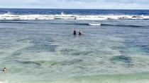 Half-Day Teta Island Tour, Tonga, Ports of Call Tours