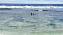 Teta Tours Island Tour, Tonga, Cultural Tours