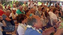 Traditional Tongan Cultural Daytime Buffet Lunch Show, Tonga, Ports of Call Tours