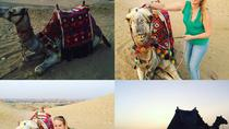 sunset or sunrise camel ride, Cairo, Nature & Wildlife