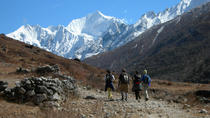 9 Nights 10 Days Langtang Trekking in Nepal, Kathmandu, Multi-day Cruises