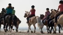 Horseback Riding Tour from Cancun, Cancun, Horseback Riding