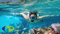 Isla Mujeres Snorkeling Tour from Cancun, Cancun, Half-day Tours