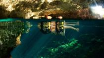 Playa del Carmen Jungle Tour: Tulum, Cenote Snorkeling, 4x4 Ride and Ziplining, Playa del Carmen