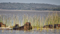 2-Day Maputo Special Reserve Guided Tour, Maputo, Nature & Wildlife