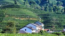 Hangzhou Private Tour from Shanghai by Bullet Train, Shanghai, Plantation Tours