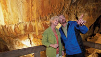 Tram and Cave Tours at Glenwood Caverns Adventure Park, Glenwood Springs
