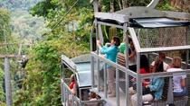 Shore Excursion: Aerial Tram Ride and Trail Tour, Limon, Ports of Call Tours