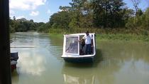 Zipline and Tortuguero Canal Tour from Limon, Limon, Ziplines