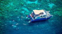Kealakekua Bay Deluxe Snorkel Cruise, Big Island of Hawaii, Lunch Cruises