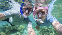 Kealakekua Bay Snorkel Cruise, Big Island of Hawaii, Dolphin & Whale Watching
