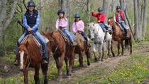 Niagara Beach Horseback Ride, Niagara Falls & Around