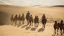 Gobi Desert in 4 Days, Ulaanbaatar, Multi-day Tours