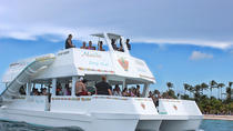 Private Punta Cana Party Boat including Snorkeling, Natural Pools, and Water Slide, Punta Cana, Day ...