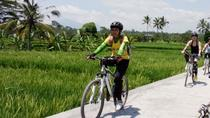 Bali Mountains and Villages Cycling Tour, Bali