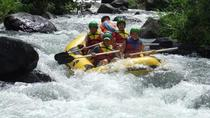 Full-Day Telaga Waja River White Water Rafting with Buffet Lunch, Bali, White Water Rafting