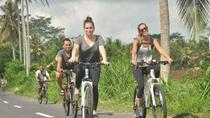 Sangeh Village Cycling Tour, Bali, Bike & Mountain Bike Tours