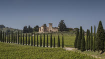 Wine Experience in Chianti Classico, Chianti, Wine Tasting & Winery Tours