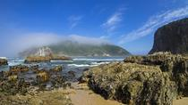 Explore The Garden Route, Cape Town, Multi-day Tours
