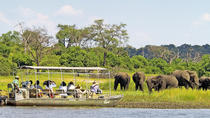 Full-Day Chobe National Park Tour from Victoria Falls, Victoria Falls, Safaris