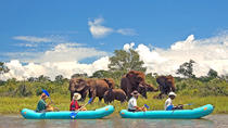 Full-Day Upper Zambezi Canoe Safari from Victoria Falls, Chutes Victoria