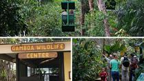 Ecological Exhibitions in Gamboa, Gamboa, Eco Tours