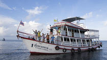 3-Day Advanced Adventurer around Koh Tao All-in Liveaboard, Golfo da Tailândia