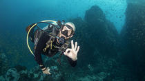 3-Day Open Water Course around Koh Tao, Gulf of Thailand, Scuba Diving