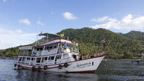 3-Day Open Water Course at Koh Tao All-in Liveaboard, Surat Thani, Scuba Diving